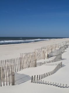 USA, New York, Long Island, the Hamptons, Westhampton Beach, Beach Erosion Fence Photographic Print