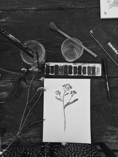 Taide hetki. Art by Sigrid Ida-Auroora Tervo Instagram @art.sigrid #taidehetki #taiteilu #maalaushetki #piirustushetki #art #artmoment  #moment #arthobby #drawing #plantdrawing #painting #watercolor #vesivärit #maalaus Ant Drawing, Turntable, Instagram, Artwork, Painting, Record Player, Work Of Art, Auguste Rodin Artwork, Painting Art