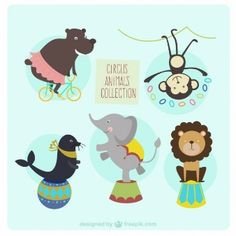 Circus animals collection