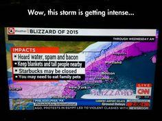 Blizzard Impacts