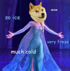 Such Doge! Wow!