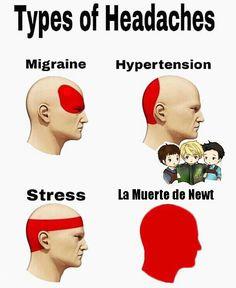 33 Extremely Hilarious And Sarcastic Relationship Memes Migraine, Matt Kean, Meme Caption, How To Focus Better, Stress, Teacher Memes, Struggle Is Real, Relationship Memes, Maze Runner