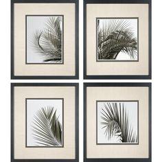 Phoenix Galleries Palm Leaf Framed Prints - Palm Leaf Series