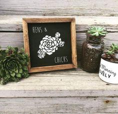 Hens & Chicks