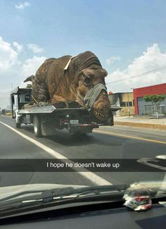 Isn't this how Jurassic Park 2 ended?!