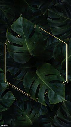 Hexagon golden frame on a tropical background vector premium image by Adj HwangMangjoo marinemynt Wallpaper Free, Plant Wallpaper, Framed Wallpaper, Tropical Wallpaper, Iphone Background Wallpaper, Cellphone Wallpaper, Aesthetic Iphone Wallpaper, Flower Wallpaper, Aesthetic Wallpapers