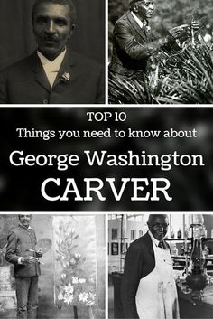George Washington Carver - Thanks to all his research, today there is a museum and monument in his honour, and he is introduced in the National Inventors Hall of Fame. The Effective Pictures We Offer Black History Inventors, Black History Facts, Black History Month, George Washington Carver, Washington Art, Washington University, History Projects, Art History, Slavery History