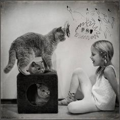 Andy Prokh - Photograph: his daughter Katherine with her cats