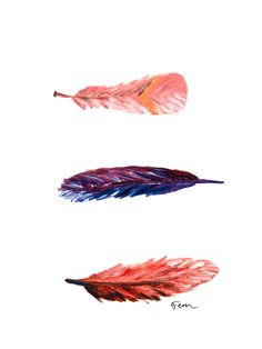 Catchii Illustration South African Garden, Swirling Feathers
