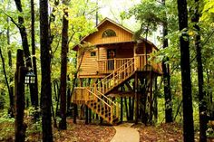 Treehouse Cottages is a forest haven in Eureka Springs, Arkansas, founded and built by Terry and Patsy Miller. Seven tree houses, and one cottage, are available for rent for about $150 to $180 per night.     The tree houses are built 22 to 26 feet above ground using five wooden poles, while the ground level cottage overlooks the terraced flower garden.    treehousecottages.com