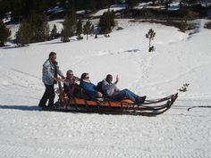 Dog-sleigh Andorra
