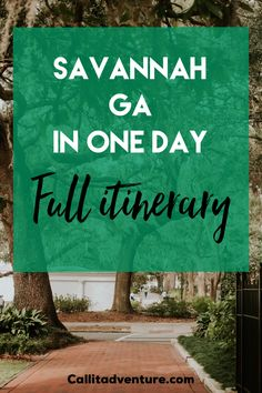Check out my one-day Savannah itinerary with most popular Savannah attractions and fun things to do in Savannah. Savannah GA things to do Savannah Georgia Travel, Visit Savannah, Savannah Chat, Weekend Trips, Day Trips, Savannah Attractions, Places To Travel, Places To Go, Ga In