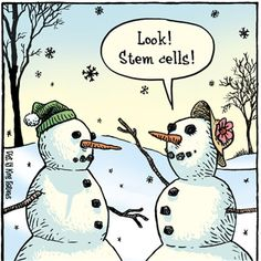 My radio blog on the importance of banking stem cells from umbilical cord and cord tissue.