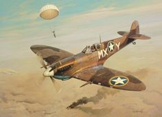 Adding Insult to Injury by Roy Grinnell (Spitfire Mk IX)