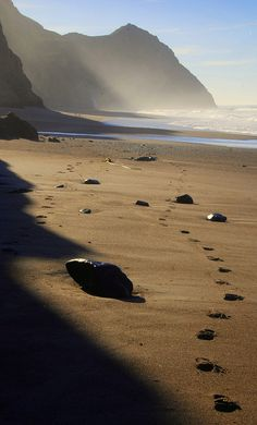 Foot steps in sand near Alamere Falls, Point Reyes National Seashore, California