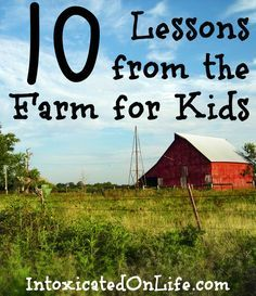 Join the Farm Mail Club so that your children can receive monthly letters about what life on a small American farm is like.