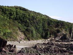 POLPERRO SIDE OF TALLAND BAY,Cornwall