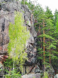 Anthropomorphic rock formation in Astuvansalmi, Finland. Plenty or rock art has been found from the surrounding area as well.