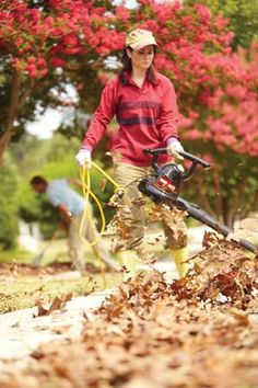 As the season turns cooler, you're probably about to be faced with a yard full of leaves. Here are five ways to use them!