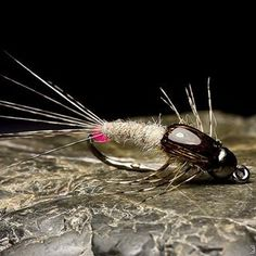 Butt Issue Nymph ○ #theonefly #flyfishing #flytying #troutflies #grayling #browntrout #flyfishfood #trout #troutfly #nymphfishing #rainbowtrout #fliegenfischen #fliegenbinden #forelle #troutbum #troutfishing #perhonsidonta #perhokalastus #mayflynymph #pescaconmosca #pescamosca #whitingfarms #tungstennymph