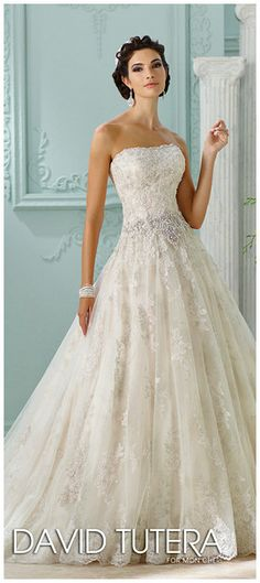 - Glamorous David Tutera Wedding Dresses for Your Perfect Attire-  Need a glamorous wedding dress or gown, David Tutera wedding dresses and gowns will be the answer. High quality dresses and gowns will beautify you. W...