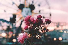 dole whips and churros. Disney Day, Disney Trips, Disney Love, Disney Magic, Disney Parks, Disney Pixar, Walt Disney, Disneyland Photography, Disneyland Photos
