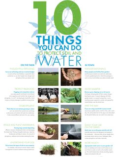 10 things you can do for Land and Water Water Quality, Health And Wellbeing, You Can Do, Budgeting, Author, Canning, Thoughts, Projects, Log Projects