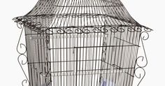Spiffy bird products and supplies like this hanging parakeet bird cage to keep your feathered friends happy, healthy and full of sass!