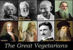 """Albert Einstein: """"Nothing will benefit human health and increase the chances for survival of life on Earth as much as the evolution to a vegetarian diet."""" Not sure if it was actually said by Einstein, but I wish it was :) Vegetarian Quotes, Vegan Quotes, Vegan Vegetarian, Going Vegetarian, Nikola Tesla, Raw For Beauty, Famous Vegans, Vegan Memes, Vegan Facts"""