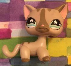 Littlest Pet Shop 792 468 Gray Tan Striped Cat Kitty Blue Flower Eyes | eBay