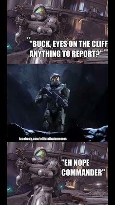 Buck knows not to cross Chief! Good ol' Ed Buck. Halo Game, Halo 5, Halo Quotes, Halo Funny, Halo Spartan, Halo Master Chief, Halo Series, Halo Reach, Jokes Pics