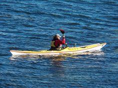 497d624c4872 9 Best Random Paddling Stuff images in 2018   Kayaking, Kayaks, Canoe