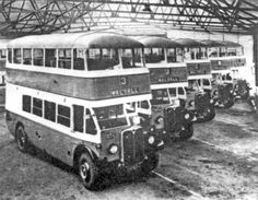 1931 AEC Regents - Walsall Corporation at Birchills depot Old Pictures, Old Photos, Sutton Park, Sutton Coldfield, Walsall, Bus Coach, Wolverhampton, West Midlands, Local History