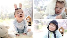 Actor Song Il Gook sends his Lunar New Year greetings this year with adorable pictures of his pinchable triplets- Dae Han, Min Guk, and Man Se- surrounded by sheep. Lunar New Year Greetings, Baby Pictures, Adorable Pictures, Cute Kids, Cute Babies, Song Il Gook, Triplet Babies, Man Se, Song Triplets