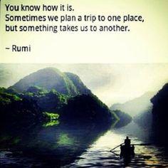 sarahaalassiri:  #Rumi #Quotes #JalaluDinRumi