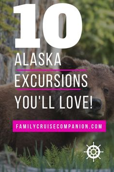 Shore excursions can be the best part of your Alaska family cruise. But the abundance of options can Alaska Cruise Tips, Alaska Travel, Alaska Honeymoon, Alaska Trip, Cruise Travel, Cruise Vacation, Usa Travel, Honeymoon Cruise, Cruise Packing