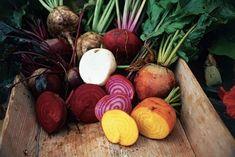 In questo inverno in cui abbiamo riscoperto il freddo, i maglioni fatti a mano e le calze di lana – spesso con piacere – anche verdure e zuppe hanno riguadagnato terreno. Soprattutto le minestre in…
