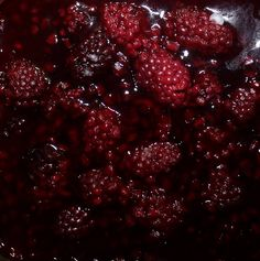 #StillLife #FoodPorn #Berries IG daniella_jasmine