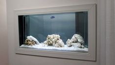 Aquário embutido na parede - Passo a passo - Parte 2 - In wall aquarium Turtle Aquarium, Wall Aquarium, Tropical Fish Aquarium, Aquarium Ideas, Fish Tank Wall, Beautiful Tropical Fish, Indoor, Modern, Basement