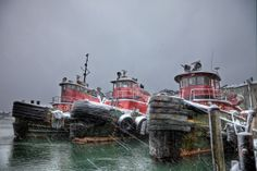 Moran Towing Tugboats in Winter