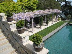Pergola patio - wisteria