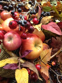 Fall apples at Ramah's