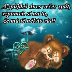 Good Night, Good Morning, Slogan, Cute Cats, Diy And Crafts, Quotes, Fotografia, Nighty Night, Buen Dia