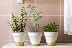 Cute white and gold flower pots