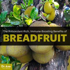 Breadfruit - Dr. Axe http://www.draxe.com #health #holistic #natural