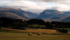 Aviemore - Adquirida por Europamundo Lago Ness, Mountains, Nature, Travel, Lakes, Edinburgh, Scotland, Circuit, Paths