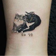 Cats tats