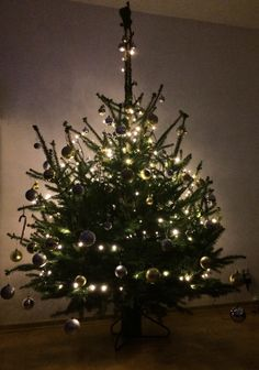 Our first Christmas tree. It's so lovely!