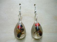 Ausgefallene Ohrringe. Entdecken auf: www.palundu.com #palundu #handmade #handgemacht #ohrringe #schmuck #jewelry #earrings #harz #insekten