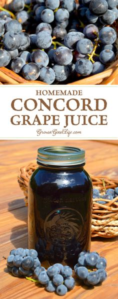 Learn how to make and preserve your own Concord grape juice at home! You control the additives and sugars. Grape Recipes, Canning Recipes, Canning Tips, Juice Recipes, Drink Recipes, Smoothie Recipes, Grape Juice, Grape Jelly, Home Canning